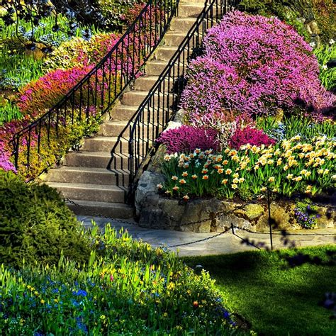 Amazing Flower Garden Amazing Flower Garden Outside Ideas