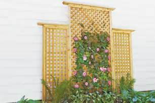 trellis plan pics photos trellis plans