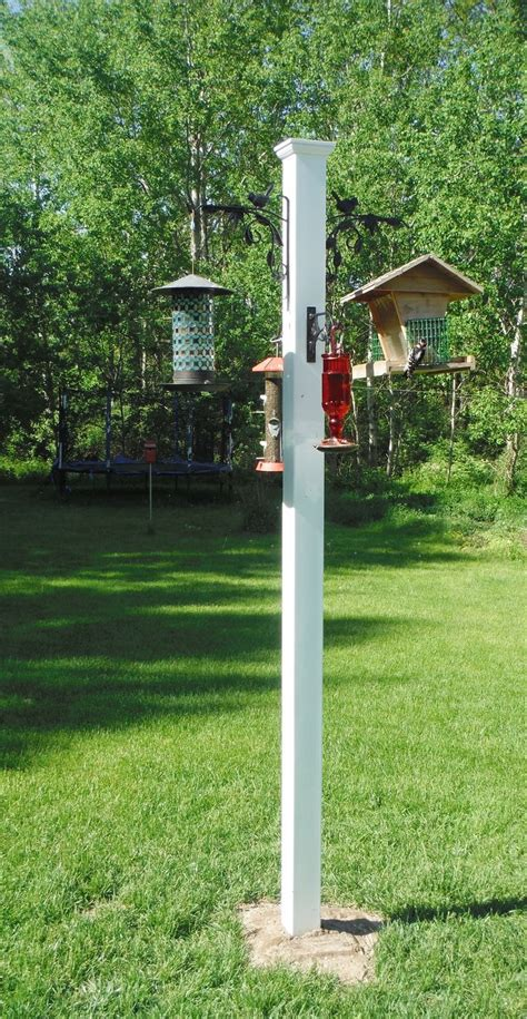 finally  squirrel proof feeder