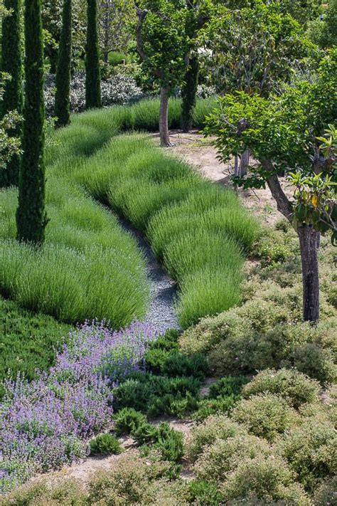 nothing says garden greatness like masses of plants evoking texture and sinuous lines when done