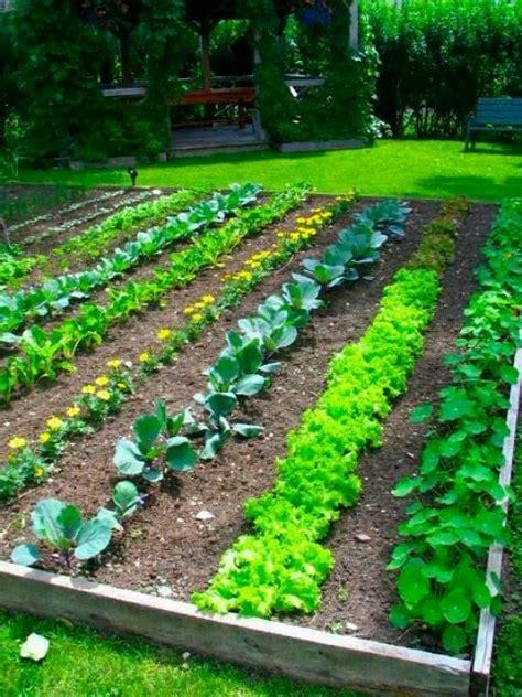 Rows Garden by Garden Rows Garden