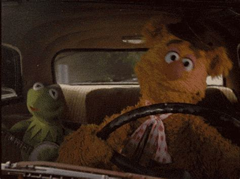 mirror movie clip fozzie bear kermit the frog rectangular wave of love is everyone excited for the new