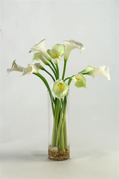 Calla Lilies In Vase calla lilies in glass vase