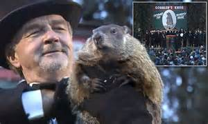 groundhog day ending groundhog day predicts early end of winter as punxsutawney
