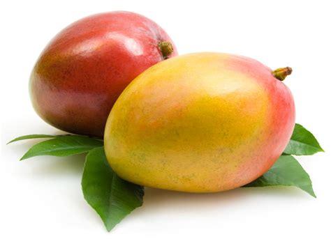 Fruit Mango fresh mango fruits 4241742 1100x797 all for desktop