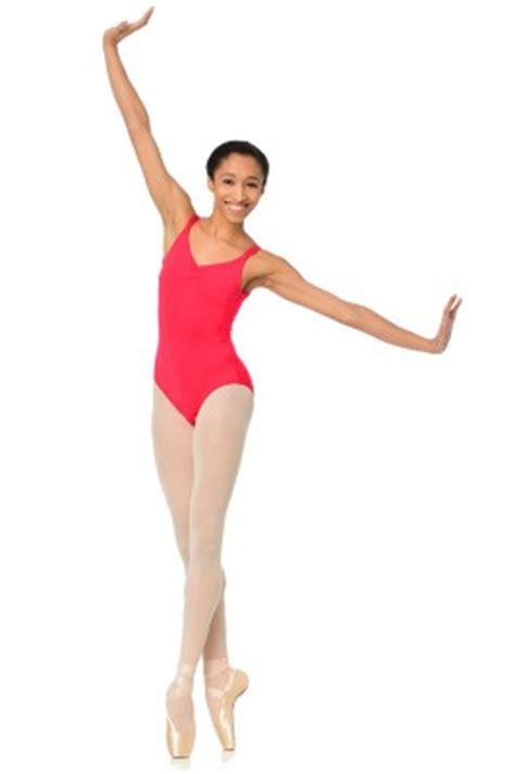 the ballet companion a the ballet companion gaynor minden