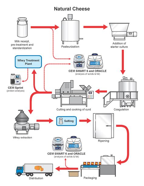 how cheese is made flowchart cheese production process