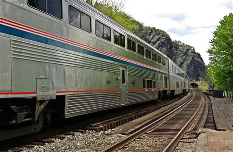 dogs on amtrak amtrak funding bill approved by house includes provision allowing pets on trains