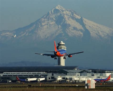 air freight forwarding services in portland or stat logistics