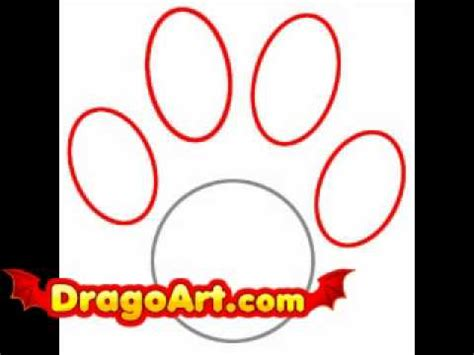 how to draw a paw how to draw a bobcat paw print www pixshark images galleries with a bite
