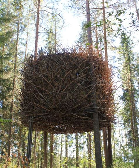 the bird s nest by inrednin gsgruppen dezeen