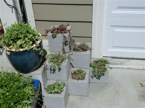 concrete block planters cinder block planters thriftyfun