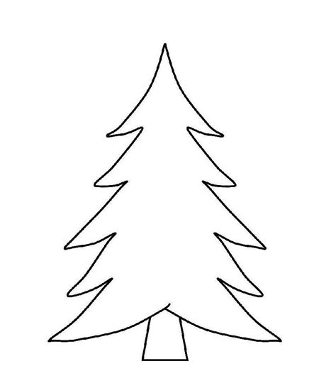 classy feel real nordic spruce small tree clear hayneedle