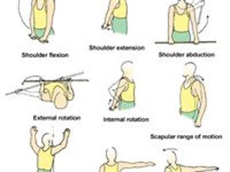 1000 images about fibro lupus exercise on poses fibromyalgia and foam