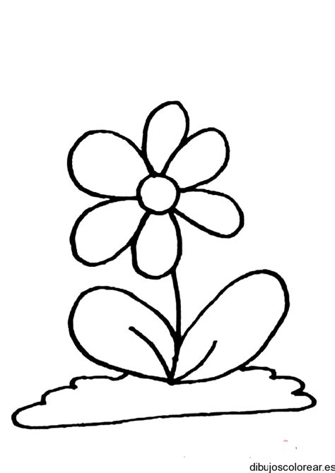 dibujos de flores para colorear free coloring pages of flores orquidea