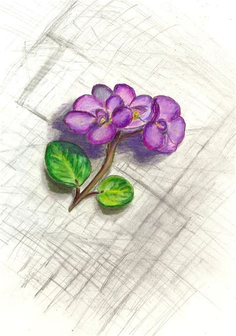 violet tattoo designs violet to honor search