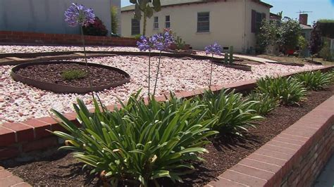 californians plant drought friendly landscapes video small business