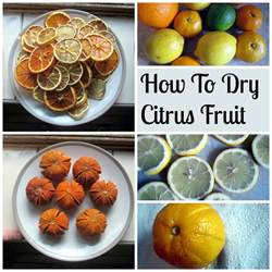 how to citrus fruit tea and a sewing machine