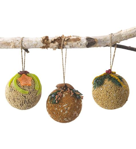 edible birdseed christmas ornaments set of 3 bird