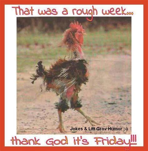 funny it s hot images it s friday quotes with pictures thank god its friday