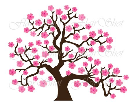 cherry blossom clip leaf clipart cherry blossom pencil and in color leaf