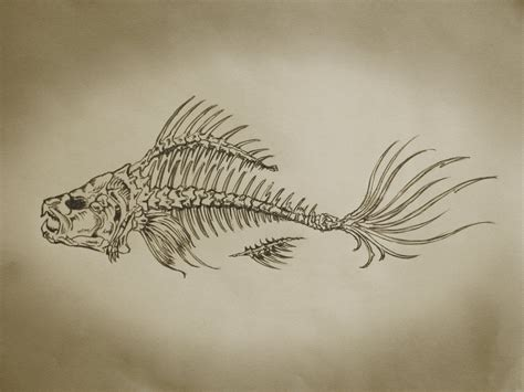 fish bones tattoo designs fishbone paintings buscar con ink