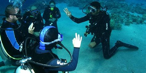 dive courses diving courses in eilat tourist israel
