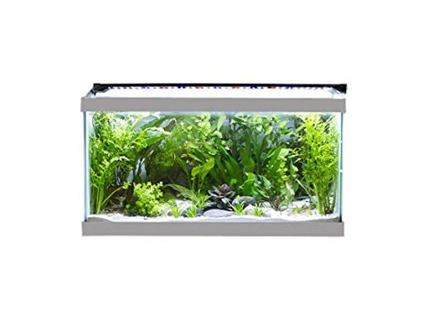 48 inch aquarium light finnex stingray aquarium led light 48 inch fish in