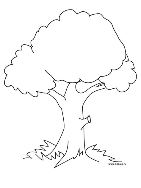 Tree Coloring Pages Fablesfromthefriends Com New Tree Coloring Pages