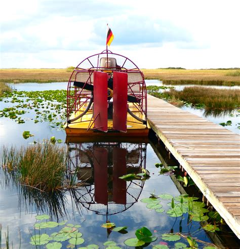 airboat louisiana sw tours our everglades airboat adventure mapping megan