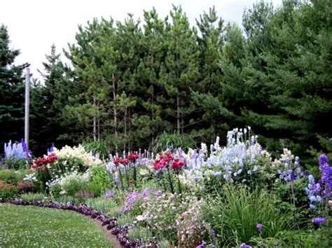 a guide to successfully designing a perennial garden 1001 gardens