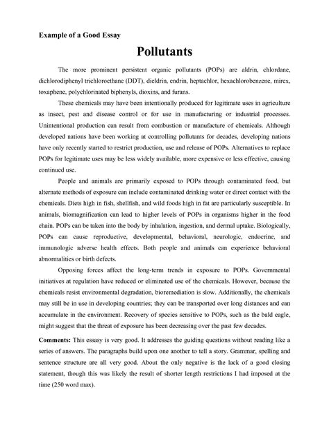 Best Speech Essay by Exle Of An Essay Tomyumtumweb