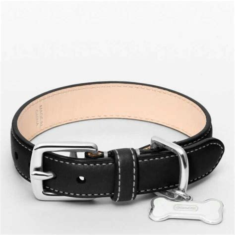 coach collars 39 best images about puppy on leash coach collar and beds