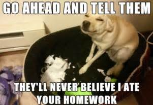 Doggy Meme - dog meme 2014