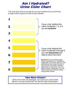 color of urine printable hydration chart urine color
