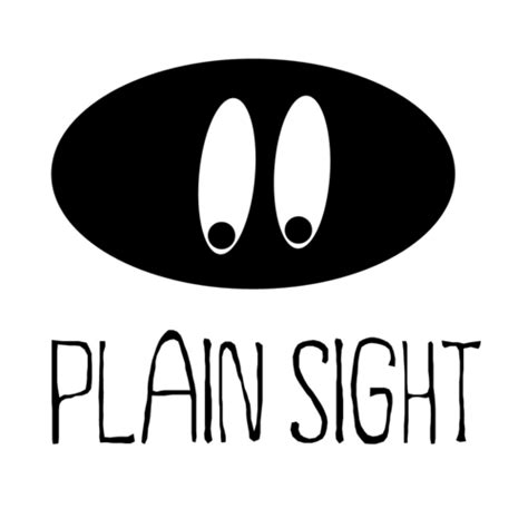 In Plain Sight plain sight plain sight
