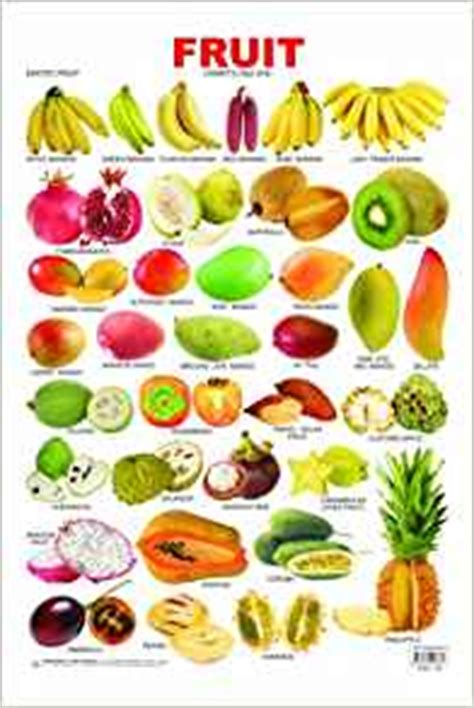fruits vegetables acai berries foods for healthy living books pre school fruit chart 5 na 9788184516661 books
