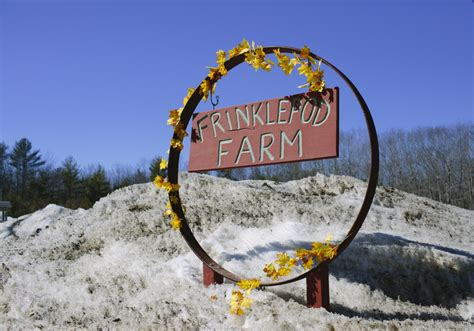 farm names maine s back to the landers take whimsical approach to farm names the portland press