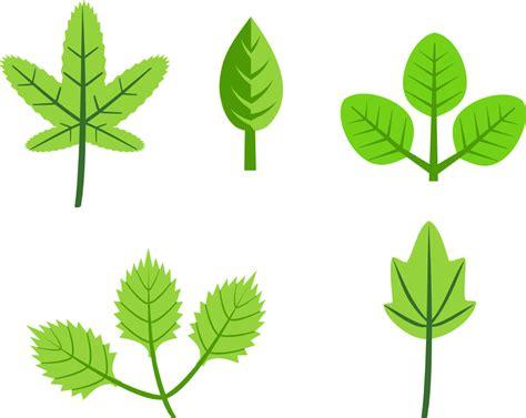 onlinelabels clip art set of leaves