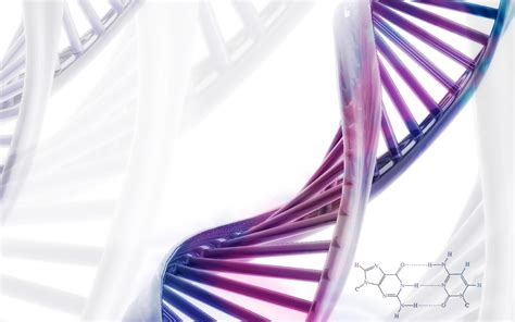art design genetic screens ihmc public cmaps 2