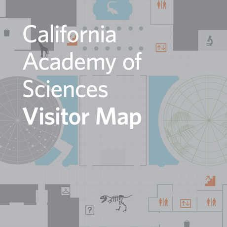 california academy of sciences floor plan california academy of sciences floor plan 28 images