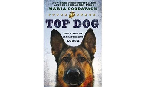 top dogs portraits and stories books book review top the story of marine lucca top