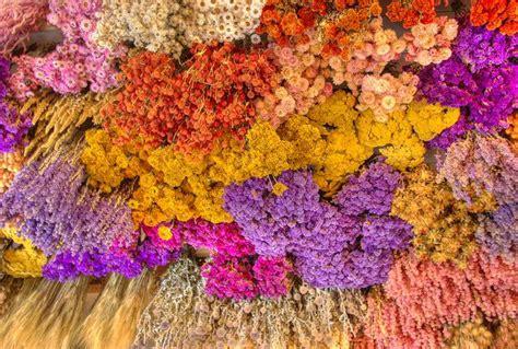seccare fiori essiccare i fiori freschi 10 composizioni floreali fai da