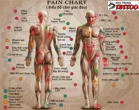 tattoo pain chart 2017 tattoo placement chart www pixshark com images
