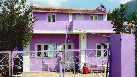 ta house painters take diversion the colour purple
