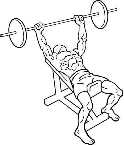 de bench press incline bench press