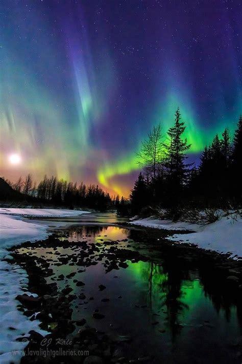When Are The Northern Lights In Alaska by Best 25 Alaska Ideas On Alaska Adventures