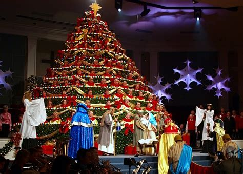 living christmas tree 2009 songman29505