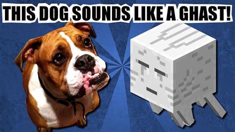 sounds dogs like sounds like a minecraft ghast