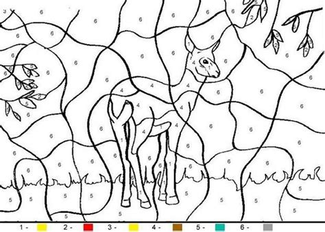 color by number animal coloring pages hind coloring pages hellokids com